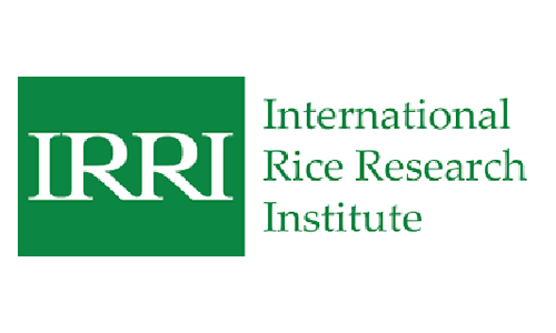 International Rice Research Institute IRRI - food testing laboratory