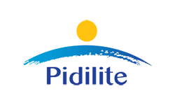 Pidilite - chemicals and adhesives